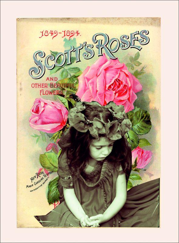 Karkulka s šípkovou růží - obrázky na látce, designový tisk, tisk na přání Tukan