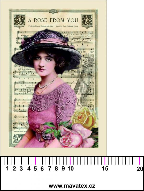 Panelový tisk - vintage dívka s notami v pozadí- tisk obrázků, obrázky na látce Tukan