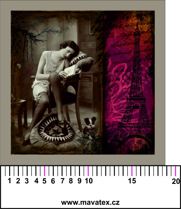 Panelový tisk - vintage dívka ve Francii- tisk obrázků, obrázky na látce Tukan