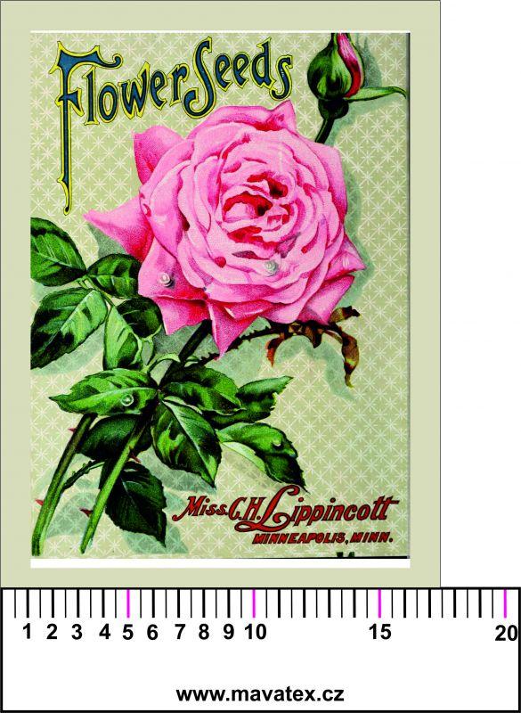 Panelový tisk - retro růže - obrázky na látce, designový tisk, tisk na přání Tukan