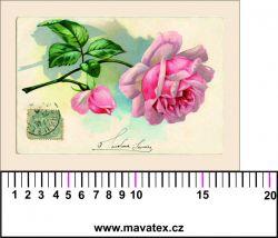 Panelový tisk - pohlednice s růží - satén