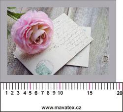 Panelový tisk - růže na dopise -kepr