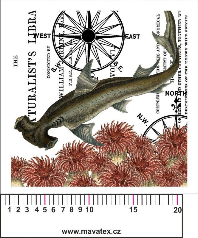 Panelový tisk vintage pohlednice moře- satén- obrázky na látce, designový tisk, tisk na přání Tukan