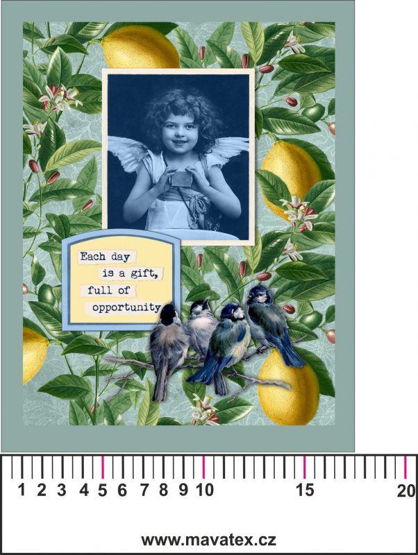 Panelový tisk vintage pohlednice s rámečkem 3- satén - obrázky na látce, designový tisk, tisk na přání Tukan