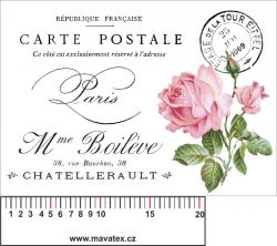 Panelový tisk - bílá pohlednice s růží-satén