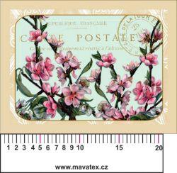 Panelový tisk -vintage pohlednice rozkvetlá třešeň- satén