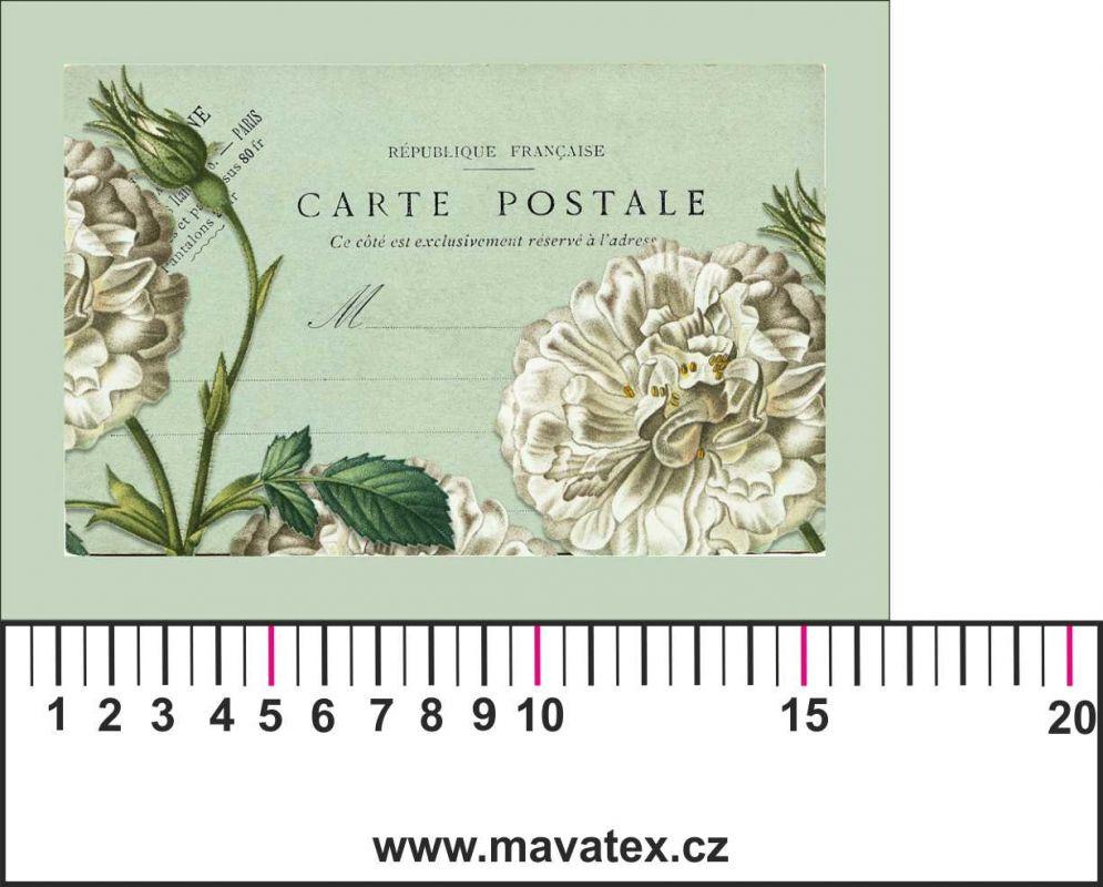 Panelový tisk -vintage pohlednice bílé růže-kepr - obrázky na látce, designový tisk, tisk na přání Tukan