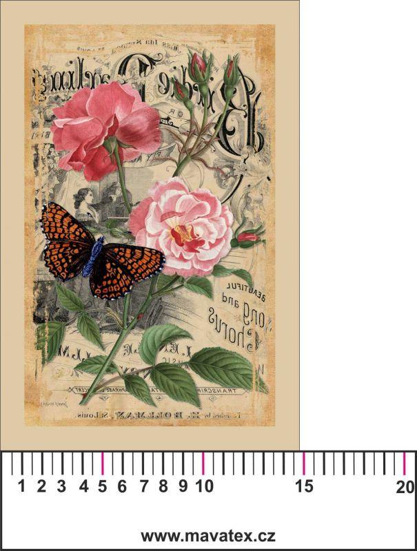 Panelový tisk -vintage pohlednice velká růžová růže a motýl-kepr- obrázky na látce, designový tisk, tisk na přání Tukan