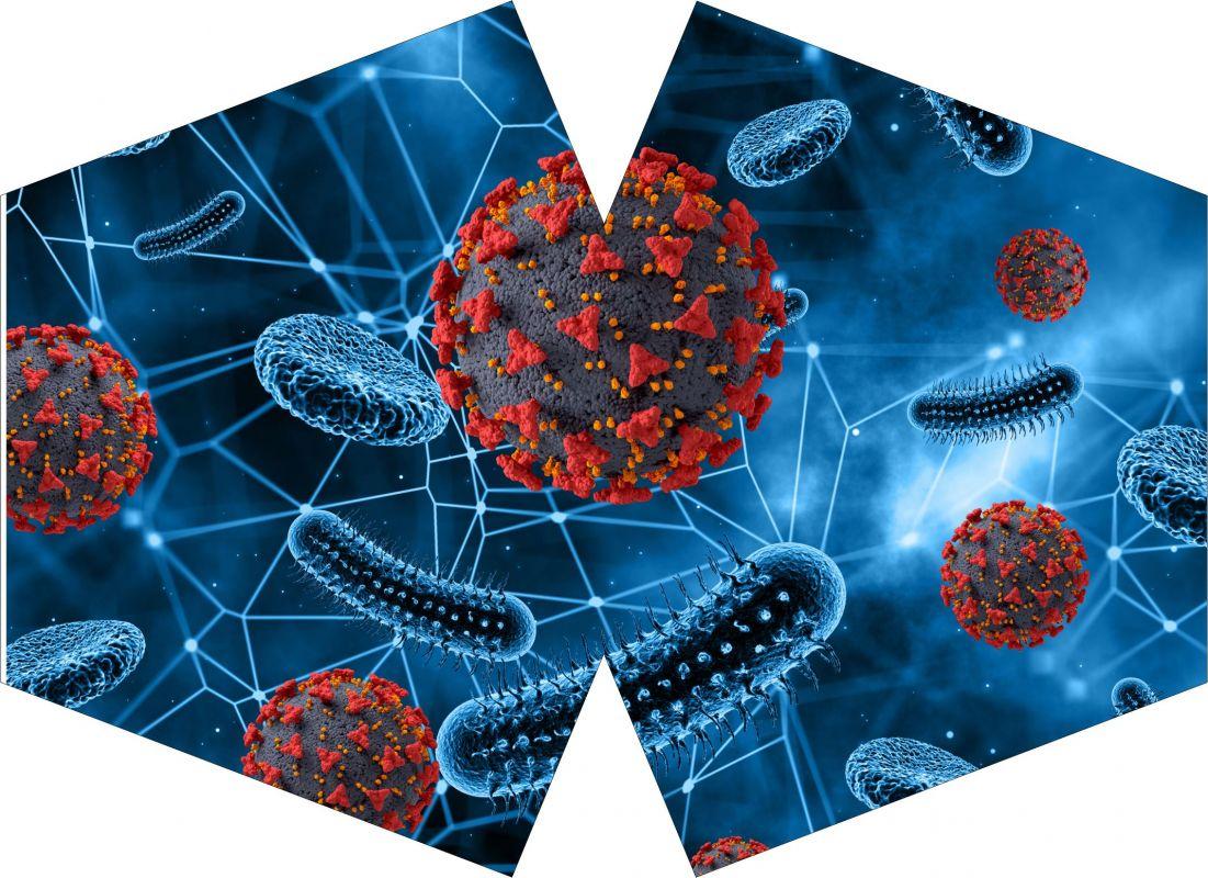 ROUŠKA PANEL- virus 2 vyrobeno v EU