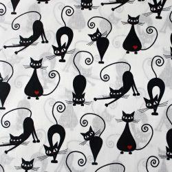 Bavlna s kočičkami na bílé