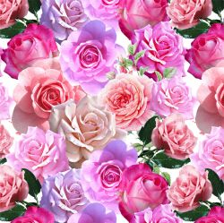 Růže-sublimační digitální tisk