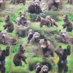 Jednolícní úplet medvíďata