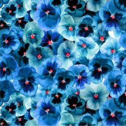 SILKY - modré macešky