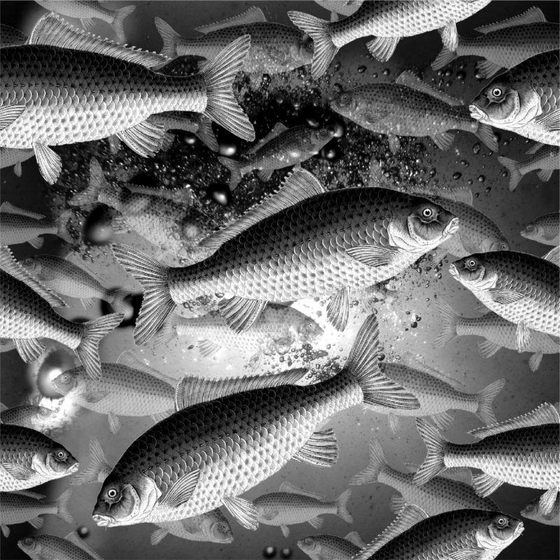 Kapříci ve vodě -sublimační digitální tisk mavaga design