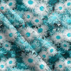 Modré gerberky-sublimační digitální tisk | Funkční úplet TORINO 140 gsm, GARZATO 200gsm- funkční úplet počesaný, Kočárkovina , LYCRA 200, Micropeach, Softshell jarní 285 gsm, Softshell letní pružný 220gsm, Softshell zimní 320 gsm