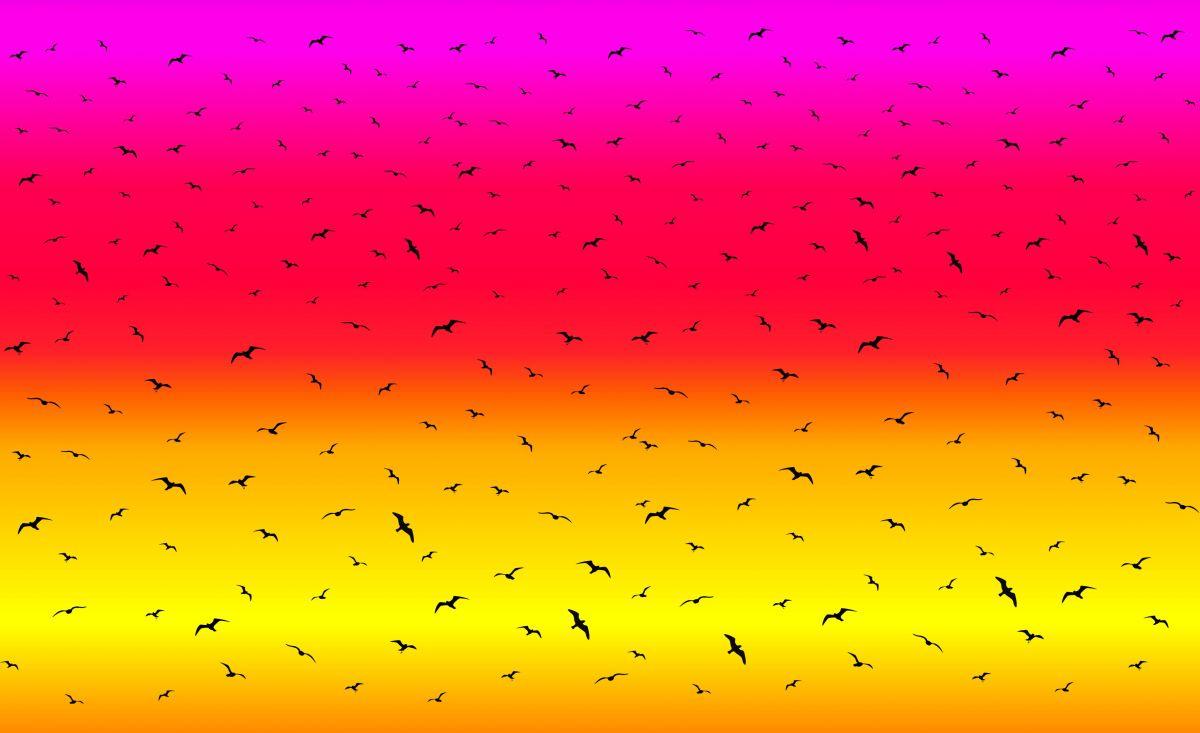PANEL na šaty / triko/leginy -duhový přechod +ptáčkové- varianty mavaga design