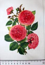 Panelový tisk - růže s lístky