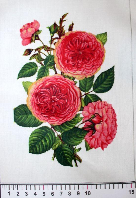 tisk panel, látka růže, panelový tisk, tisk obrázků, obrázky na látce, designový tisk, tisk na přání Tukan