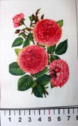 Panelový tisk - růže s lístky malá